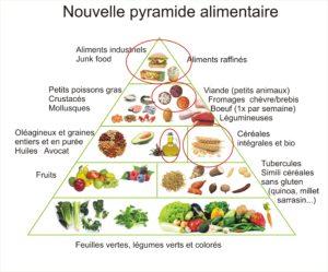 La pyramide alimentaire du passé (lointain) et du futur