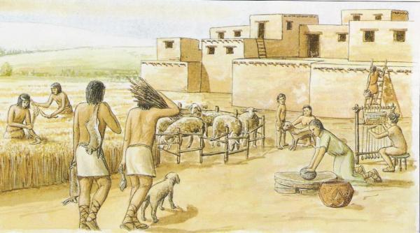 Agriculture et élevage: erreur ou progrès?