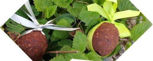 Oeuf en chocolat version plaisir ET santé